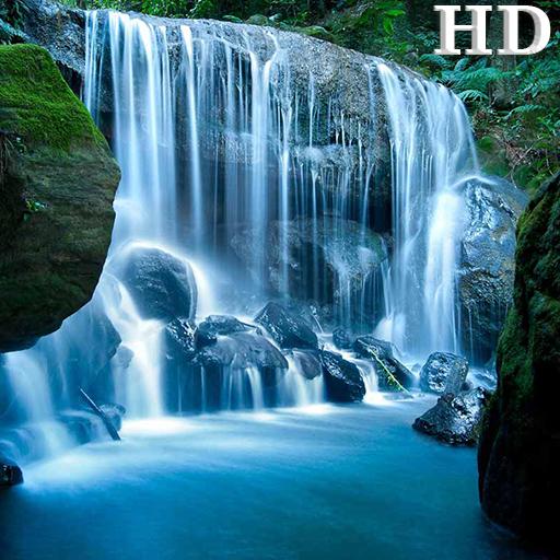 amazon nature wallpaper - photo #25