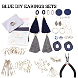 Premium Jewelry Findings Set Jewelry Making Supplies Kit Jewelry Findings Starter Kit Jewelry Beading Making and Repair Tools Kit Pliers Beads Wire Starter Tool (Color: Blue series)