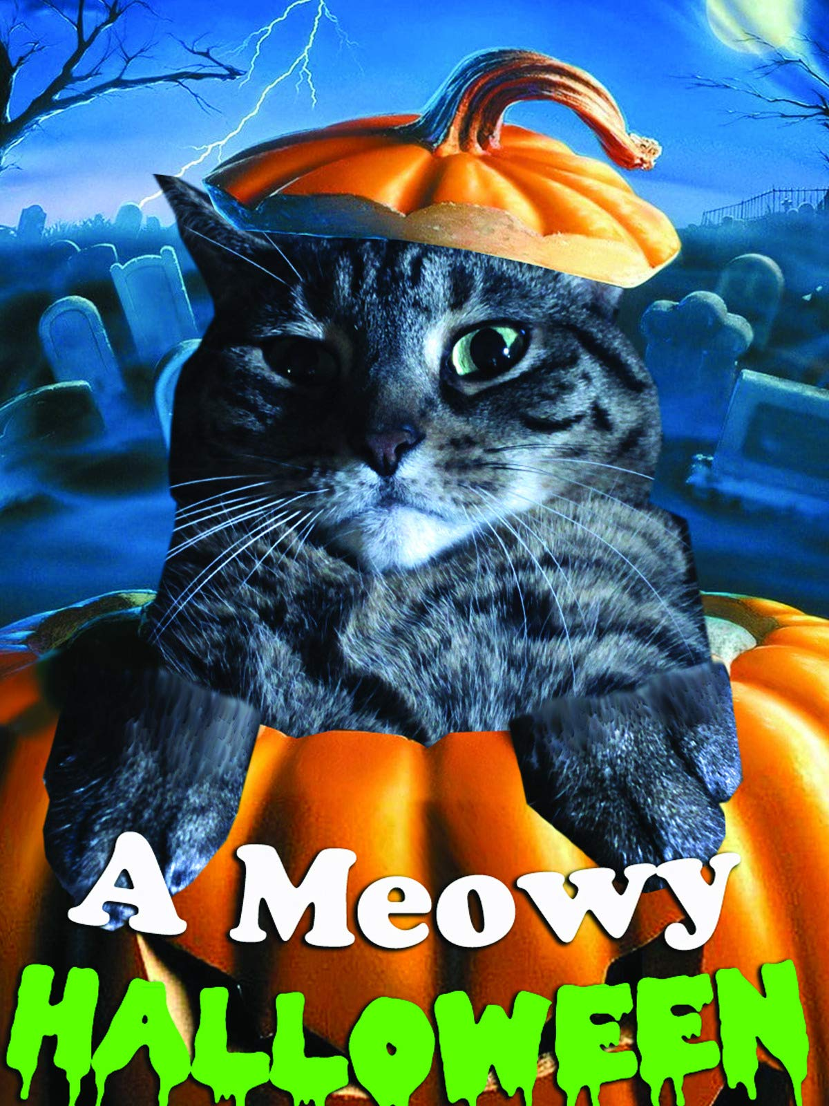 A Meowy Halloween on Amazon Prime Video UK