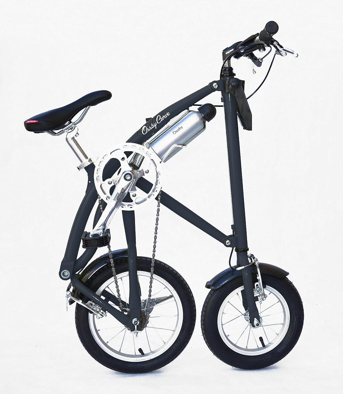 Bicicleta plegable con 5 velocidades