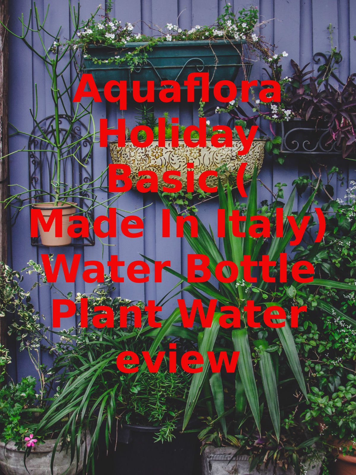 Review: Aquaflora Holiday Basic (Made In Italy) Water Bottle Plant Water Review