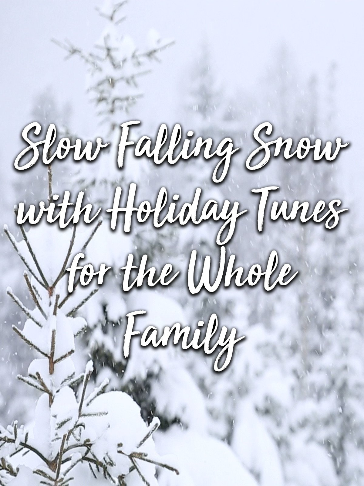 Slow Falling Snow with Holiday Tunes for the whole Family