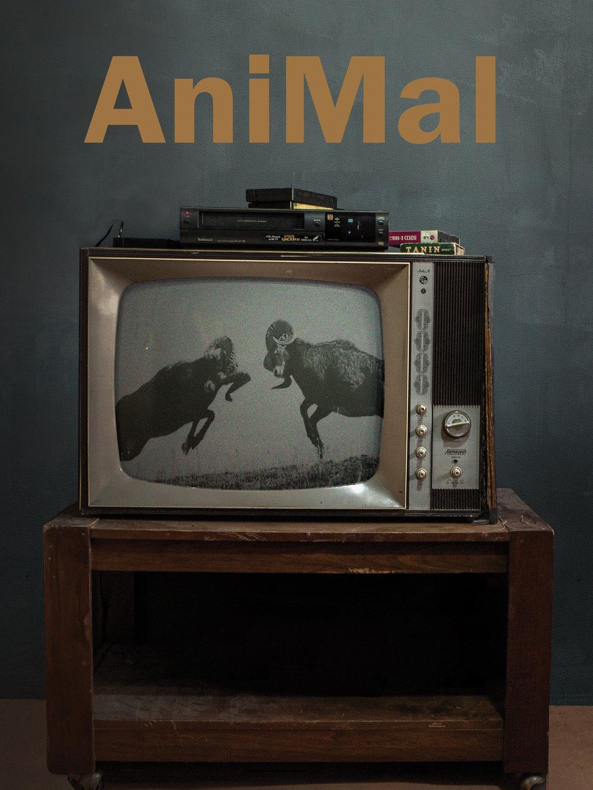 Animal on Amazon Prime Instant Video UK