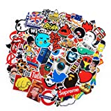 2018 Latest Style 100Pack SuprCool Stickers Set Random Sticker Decals for Water Bottle Laptop Cellphone Skateboard Bicycle Motorcycle Car Bumper Luggage Travel Case. Etc (100pcs) (Color: Multicolor, Tamaño: 100pcs)