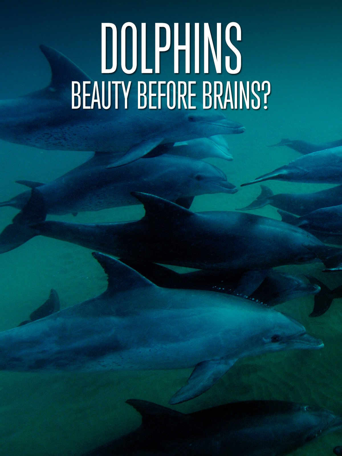 Dolphins: Beauty Before Brains? on Amazon Prime Instant Video UK
