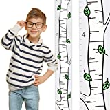 Growth Chart Art | Wooden Birch Tree Growth Chart for Kids [Boys and Girls] - Kids Room Décor Height Chart in 3X Fun Designs - Durable, Portable Birch Tree Décor (Green Leaf Single) (Color: Green Leaf Single, Tamaño: Single birch green leaf)