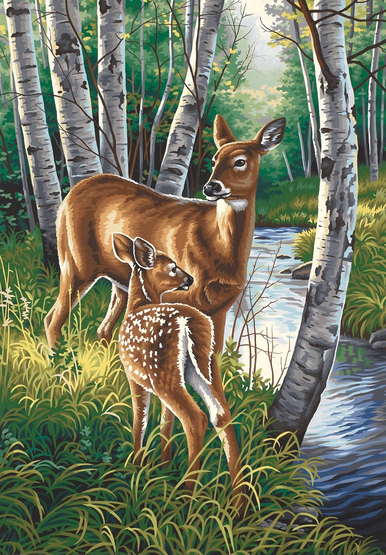 14x20 Paintworks Paint By Number, White Tailed Deer