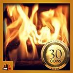 Burning Wood Fireplace