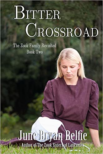 Bitter Crossroad (The Zook Family Revisited Book 2)