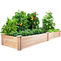 best raised garden kits