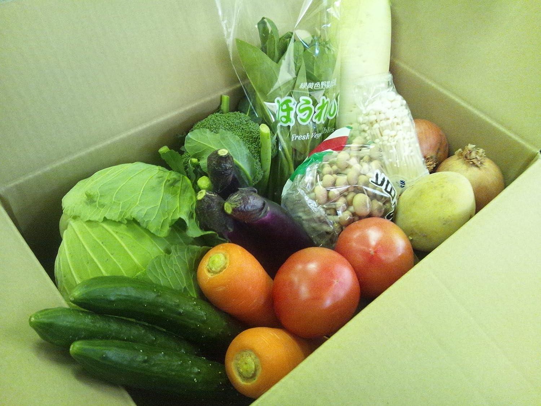 九州産 新鮮野菜 12品目 詰合せセット