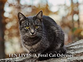 TEN LIVES: A Feral Cat Odyssey
