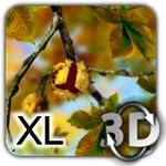 Autumn Leaves in HD Gyro 3D XL