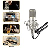 Mugig Condenser Mic, Professional Studio Microphone with Shock Mount, Adjustable Microphone Stand, XLR Cable and Pop Filter for Recording, Voice Overs