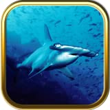 Under The Sea Jigsaw Puzzle Games