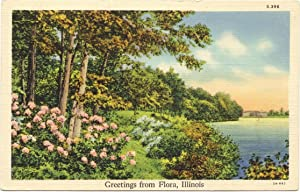 Flora, Illinois Postcard