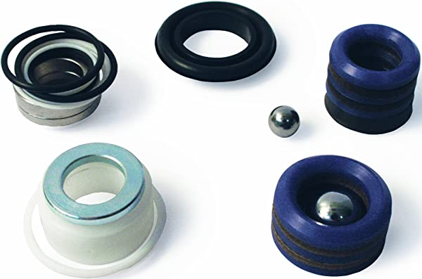 Graco 244194 Pump Repair Packing and Valves Kit for Airless Paint Spray Guns (Color: blue)