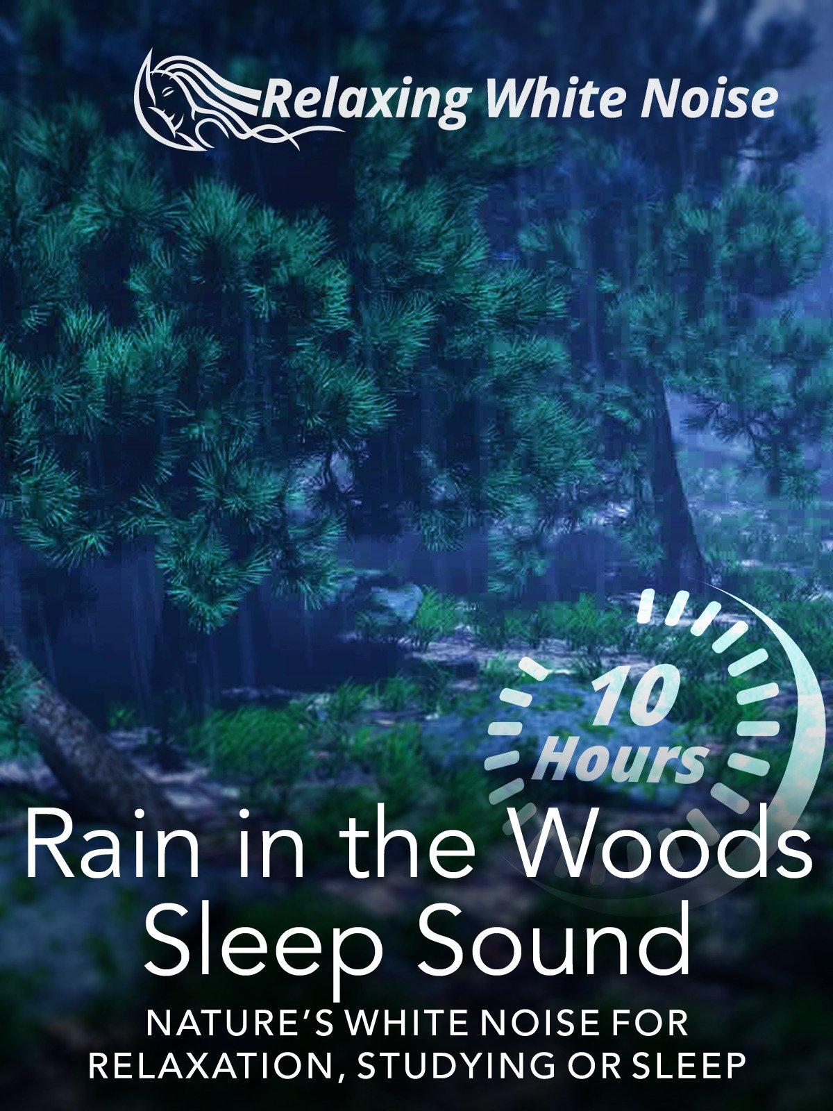 Rain in the Woods Sleep Sound 10 Hours