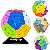 Megaminx Speed Cube, 3x3x3 Kilominx Gigaminx Cube Puzzle Games Twist Fidget Toys for Kids (Color: 3x3 Megaminx)