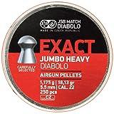 JSB Diabolo Jumbo Exact Heavy .22 Caliber Air Gun Pellets 250 ct. (Color: Gray, Tamaño: .22 Caliber)