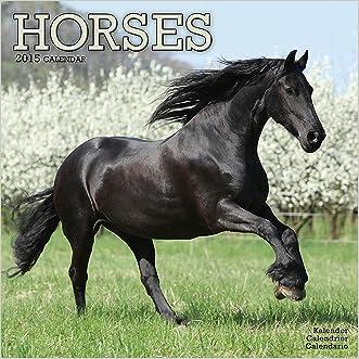 Horses Calendar - 2015 Wall calendars - Animal Calendar - Monthly Wall Calendar by Avonside