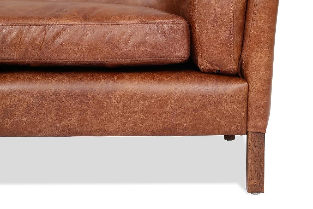 Edloe Finch Modern Leather Sofa - Mid Century Modern Couch - Top Grain Brazilian Leather - Cognac Brown