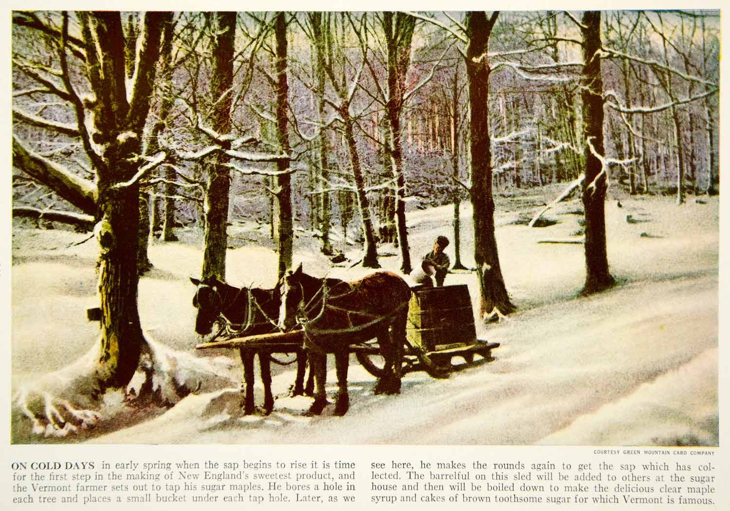 Horse Sled in New England, 1938