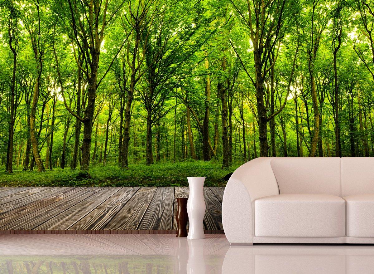 Fototapete Deep Forest in verschiedenen Größen  als Papiertapete oder Vliestapete wählbar  PVC frei, geruchloser, umweltfreundlicher Latexdruck ohne Lösemittel  Motivtapete Postertapete Bildtapete Wall Mural von Trendwände  BaumarktBewertungen