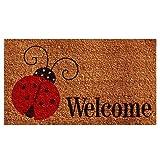 Calloway Mills 121431729 Ladybug Welcome Doormat, 17