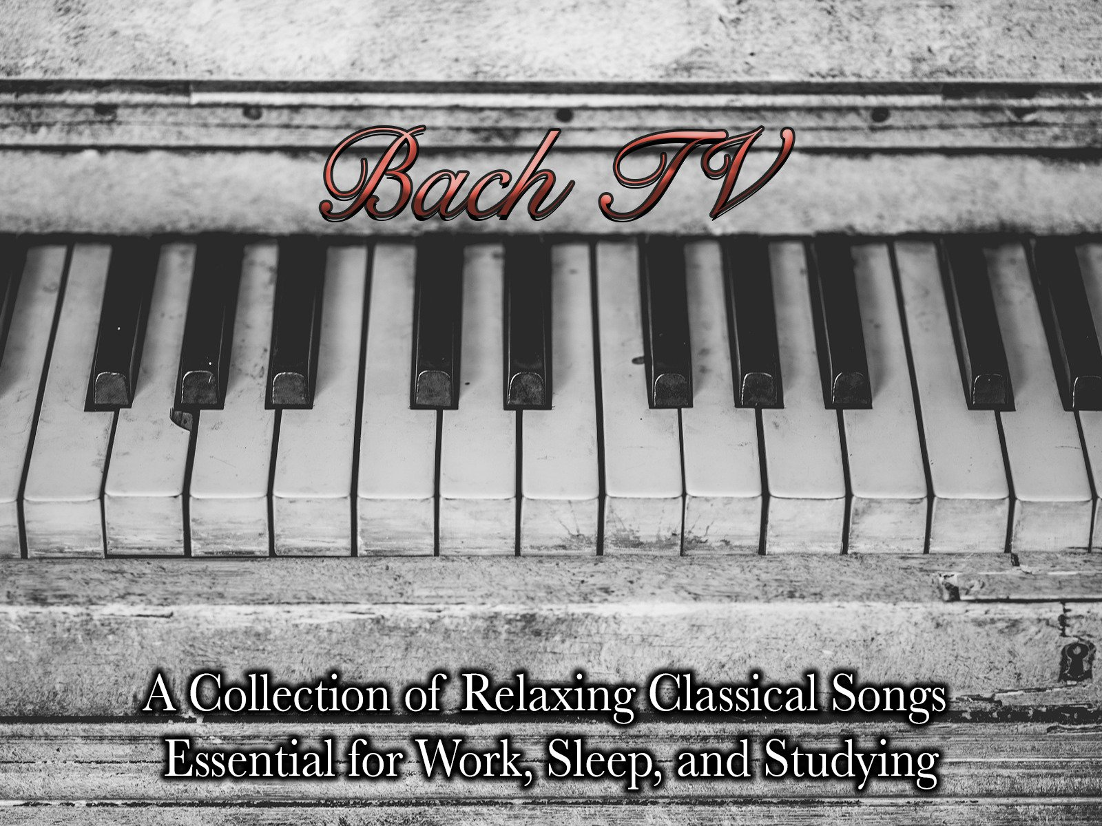 Bach TV A Collection of Relaxing Classical Songs Essential for Work, Sleep, and Studying - Season 1