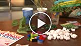 Free & Fun Games For Kids To Prevent Summer Brain...
