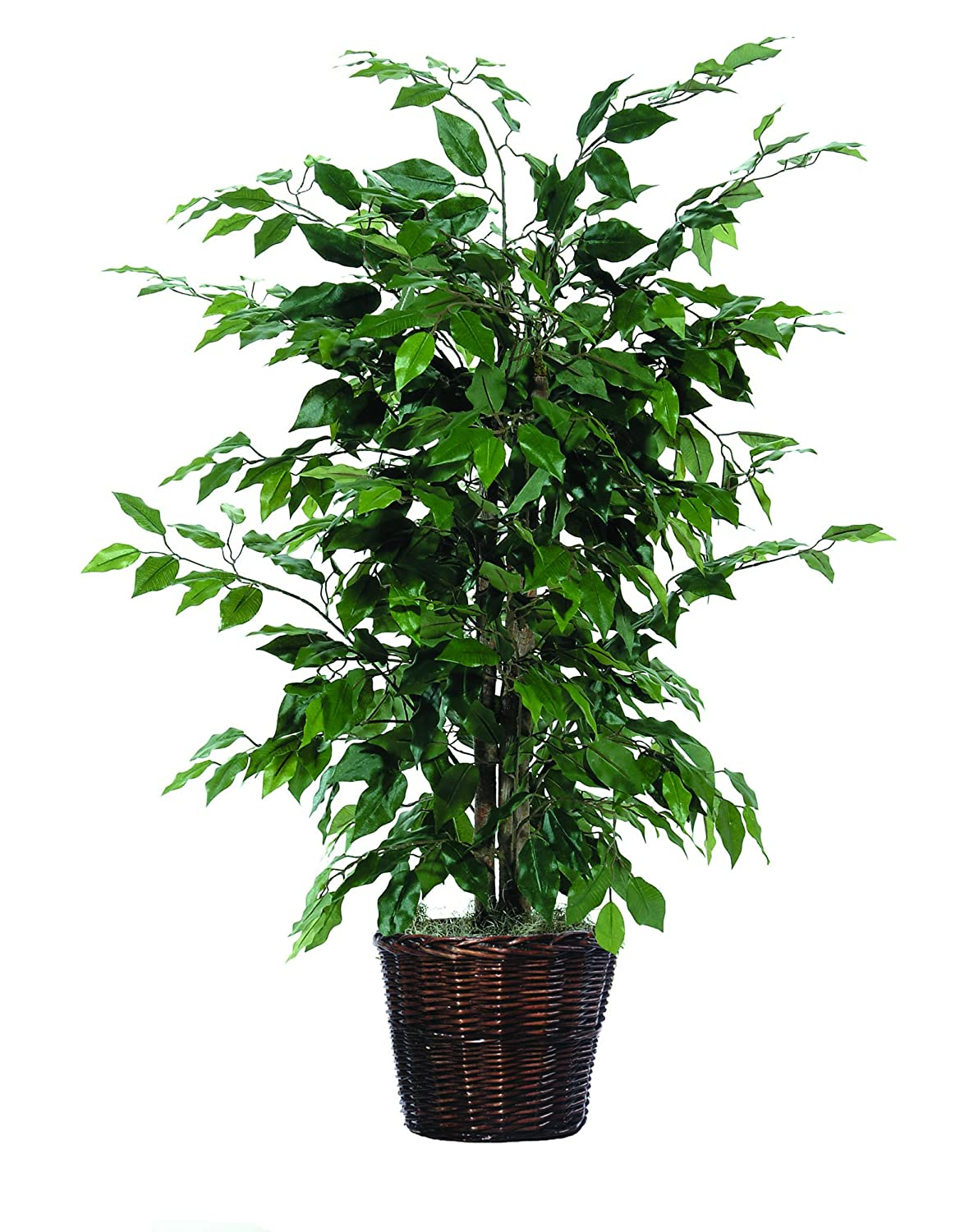 Artificial plants for Artificial plants for decoration
