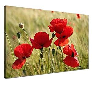 LanaKK  Mohnblumen  edel Leinwand Bild Kunstdruck auf Keilrahmen, fertig gerahmt in 100x70 cm, einteilig    Überprüfung und Beschreibung