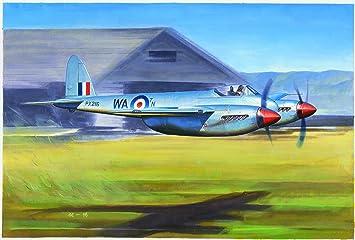"""Maquette Avion de Chasse : De Havilland """"Hornet"""" F.1"""