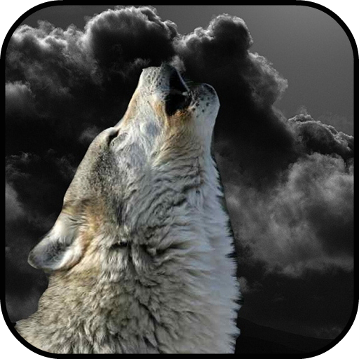 Wolf Wallpapers (Free Wolf Games compare prices)
