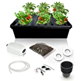 DWC Hydroponics Growing System Kit - 2 Large Airstone, 6 Plant Sites (holes) Bucket with Air Pump - Best Indoor Herb Garden for Lettuce, Mint - Complete Hydroponic Setup Grow Fast at Home by SavvyGrow (Tamaño: 6 Sites)