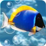 Aquarium Donation Live Wallpaper
