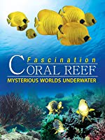 Fascination Coral Reef: Mysterious Worlds Underwater [HD]