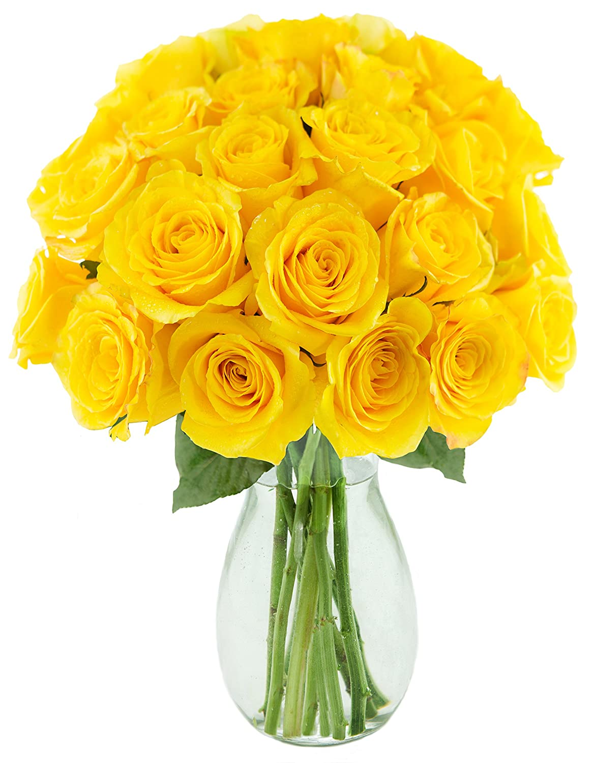 Kabloom Collection Two Dozen Always On My Life Yellow Roses Flowers with Vase, 2.5 Pound