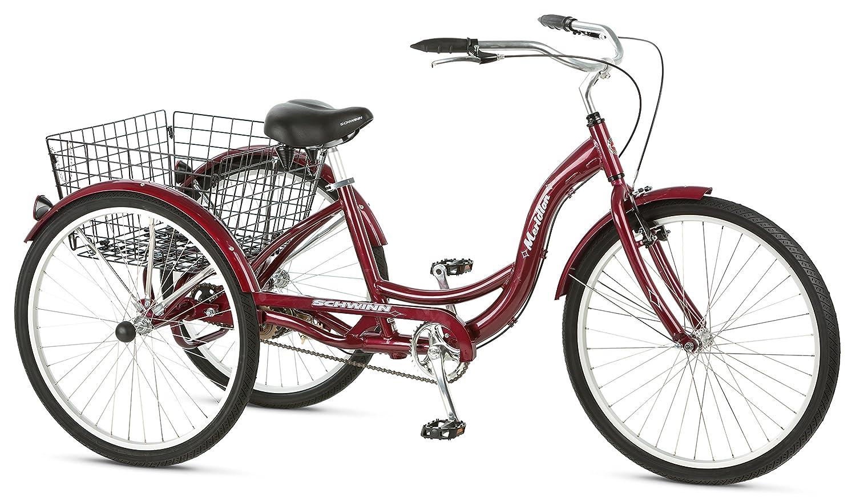 3 wheeled adult