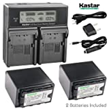 Kastar Fas Charger + 2X Battery for Panasonic VW-VBD78 VW-VBD58 VW-VBD29 AG-3DA1 AG-AC8 AG-DVC30 AG-HPX171 AG-HPX250 AG-HPX255 AG-HVX201 AJ-PCS060 AJ-PX270 AJ-PX298 HC-MDH2 HC-X1000 HDC-Z10000 HC-X1 (Tamaño: 2 batteries + 1 fast charger)