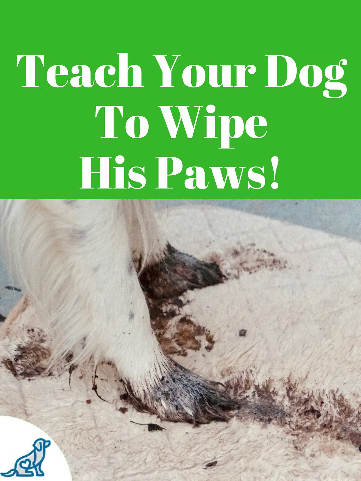 Teach Your Dog To Wipe His Paws