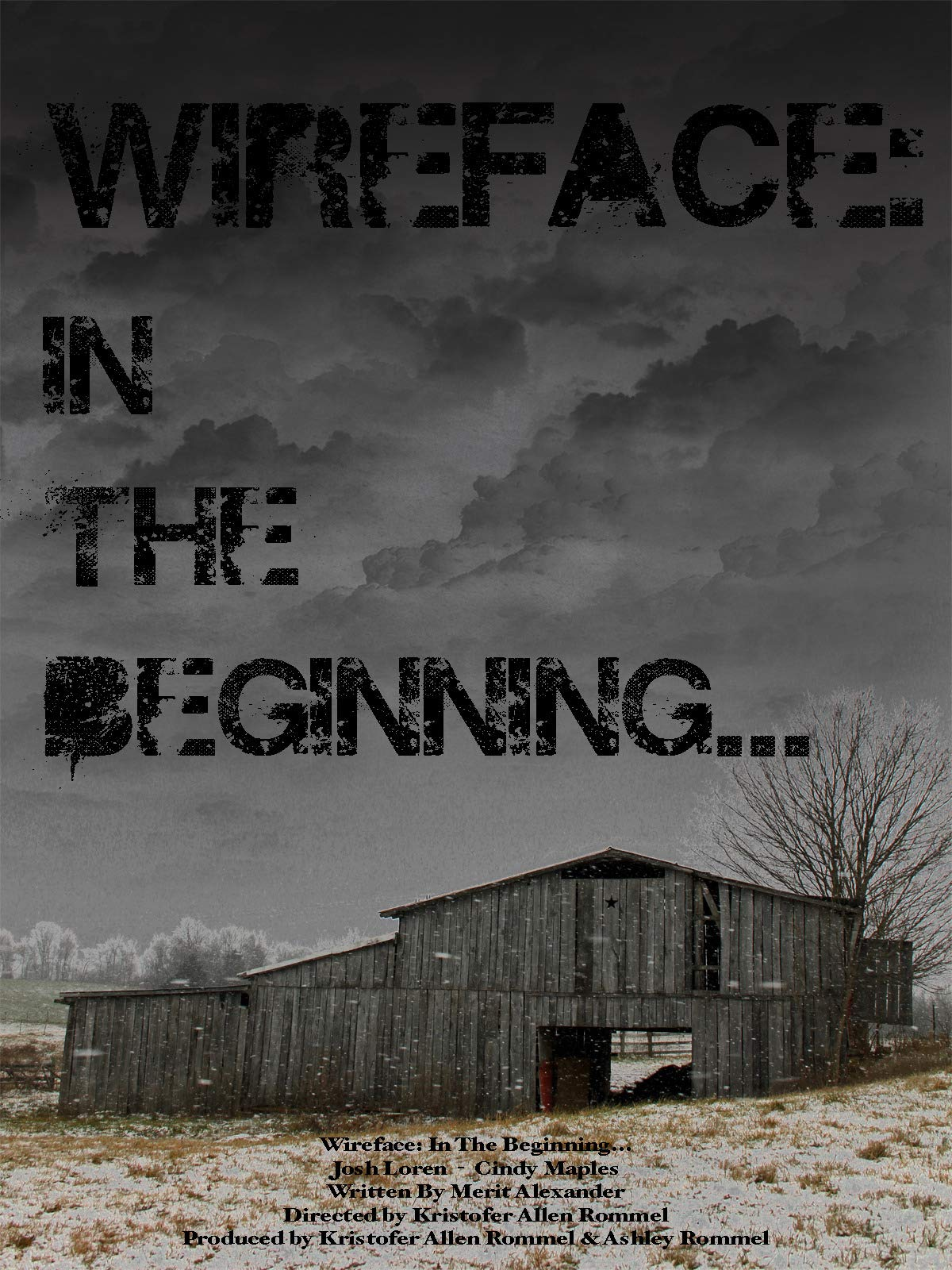 Wireface: In the Beginning