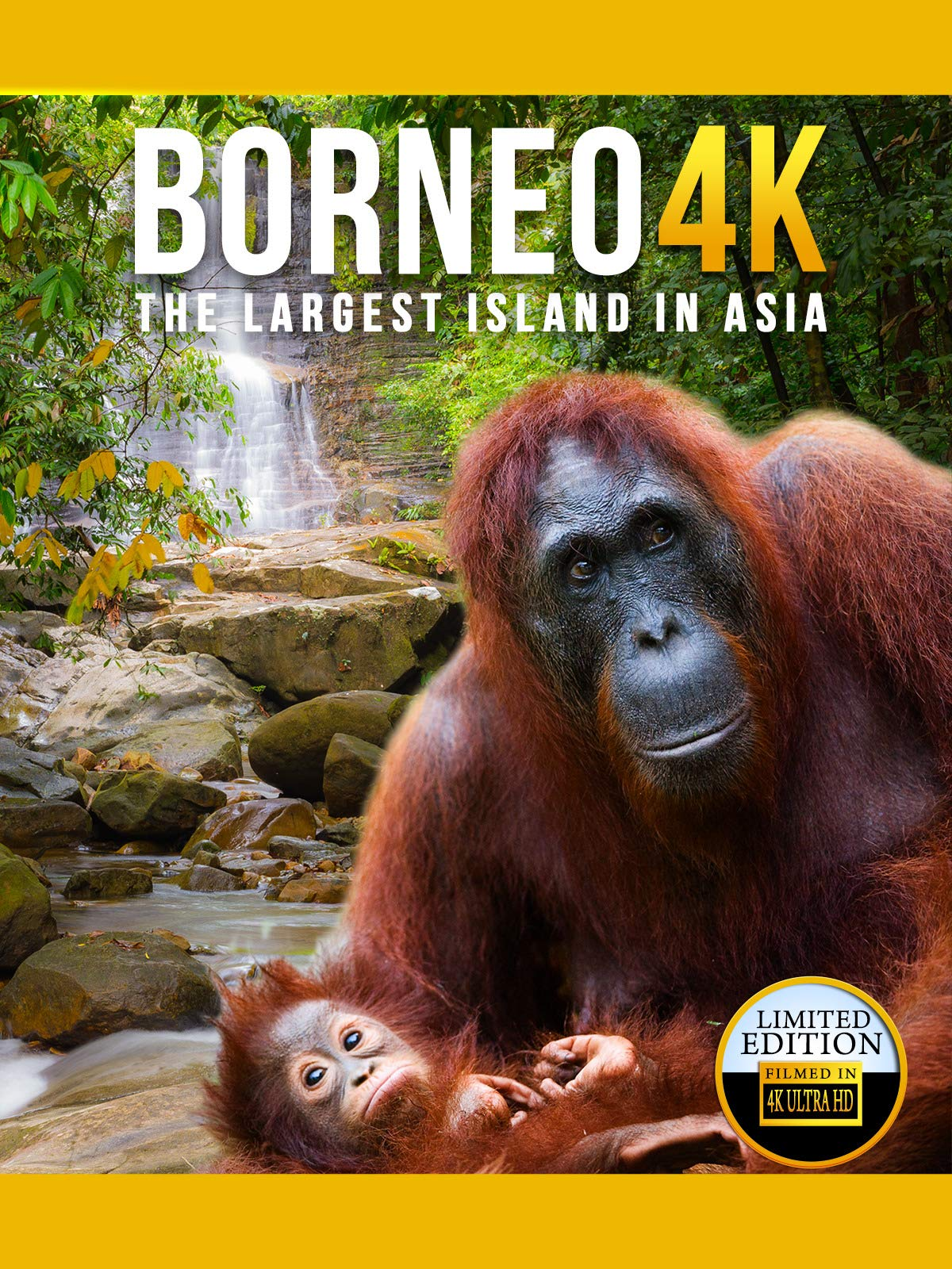 Borneo 4K on Amazon Prime Video UK