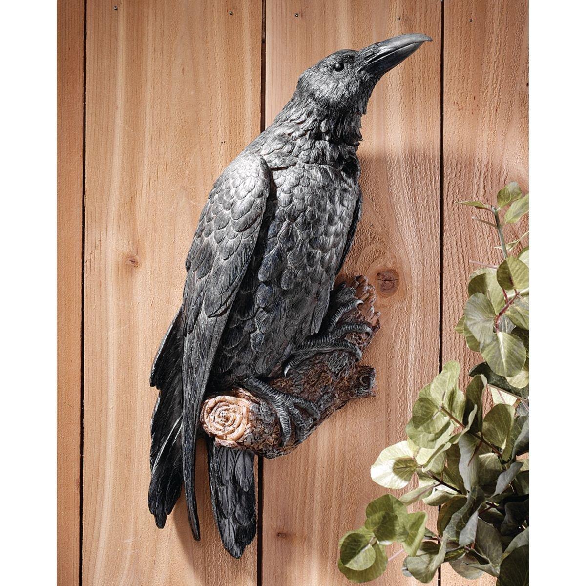 raven halloween birds