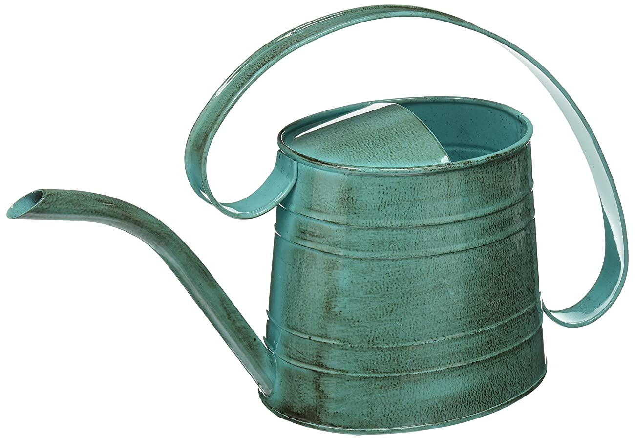 ROBERT ALLEN MPT01505 Danbury Metal Watering Can, Surf Light Blue 0