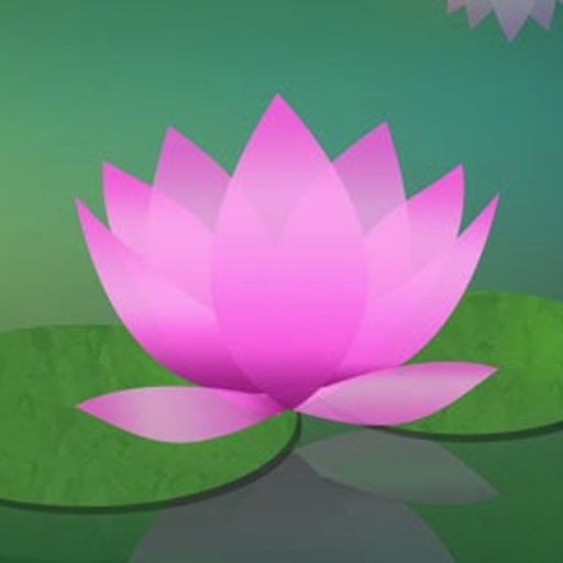 Learn to Meditate - Five Week Course