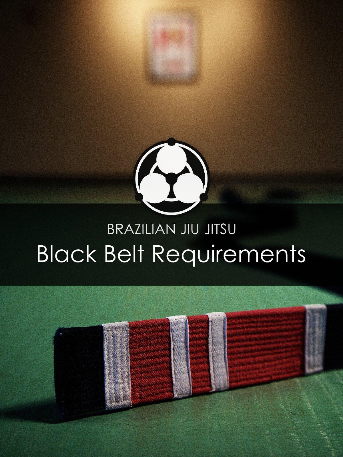 Brazilian Jiu Jitsu Black Belt Requirements