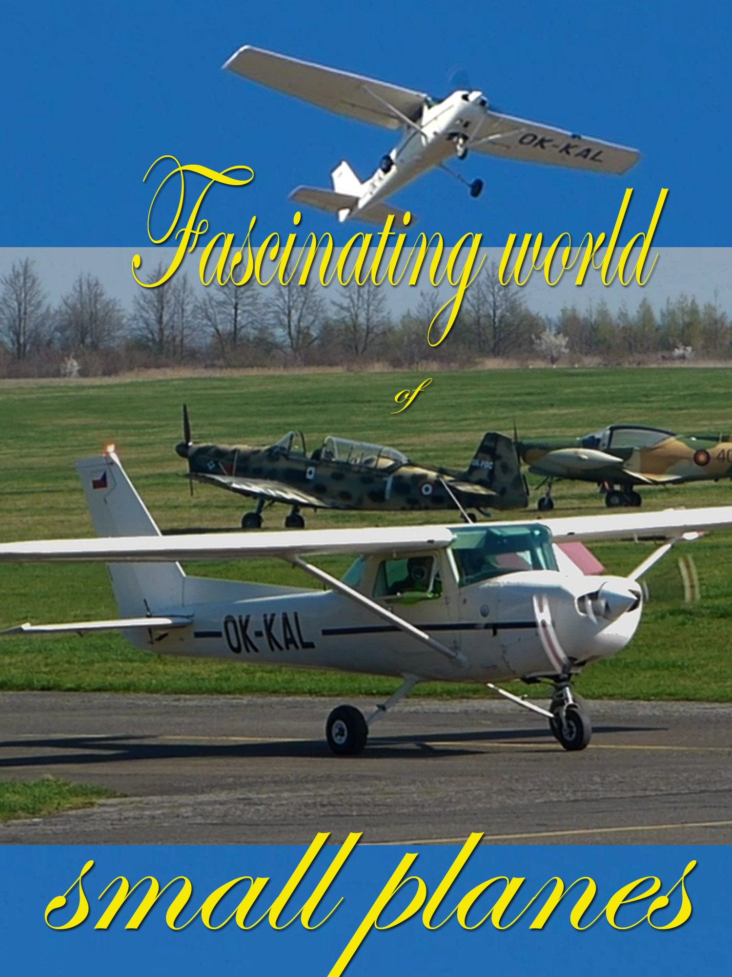 Fascinating world of small planes