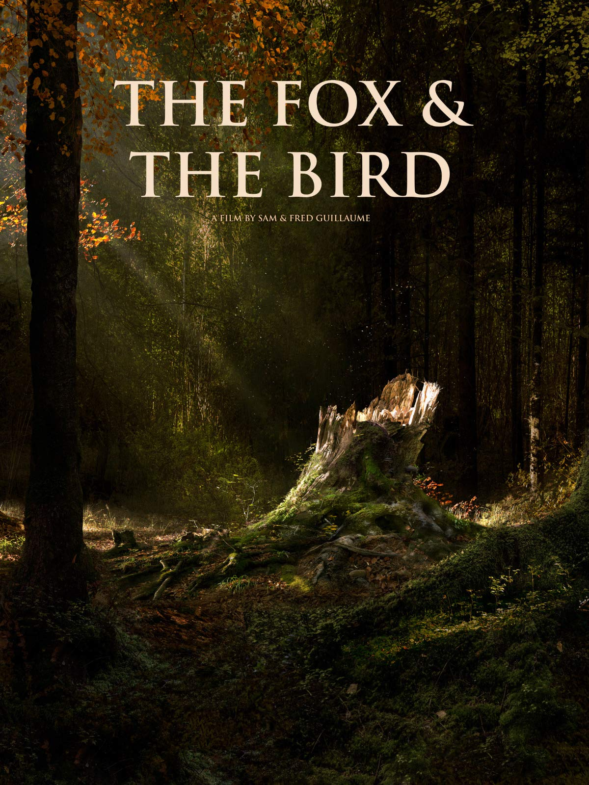 The Fox and the Bird on Amazon Prime Video UK